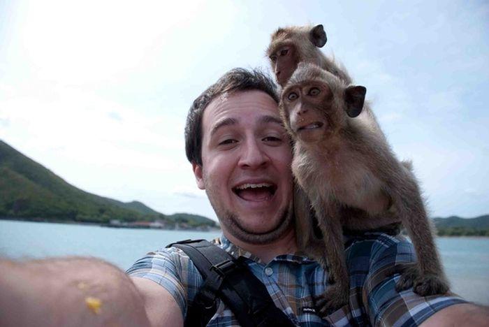 As fotos mais engraçadas de animais em 2012 21