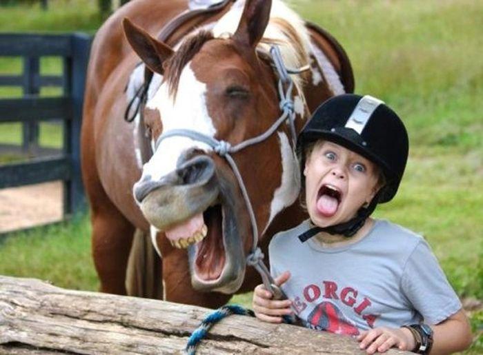 As fotos mais engraçadas de animais em 2012 26