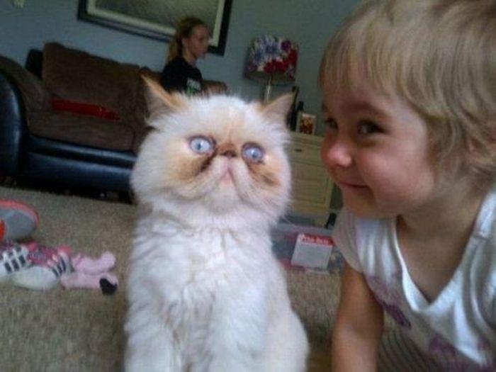As fotos mais engraçadas de animais em 2012 29
