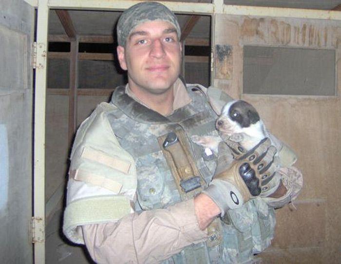 Cãozinho se tornou um símbolo de esperança para família de soldado morto 04