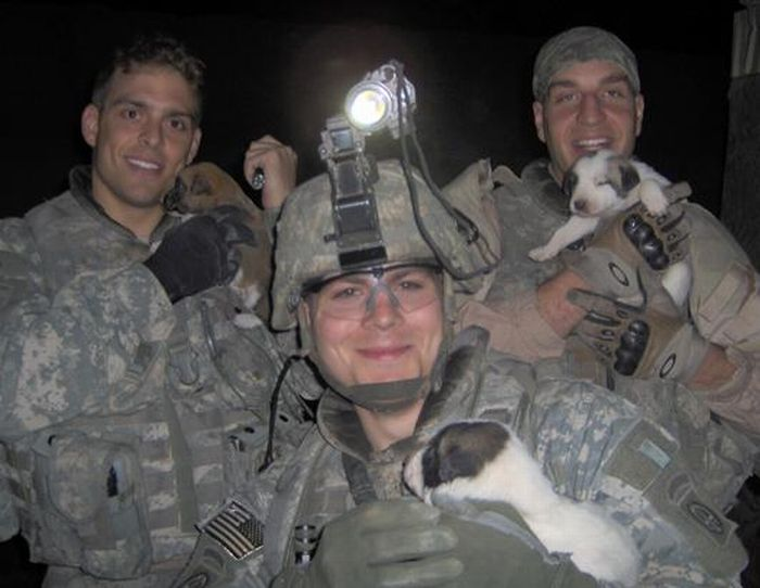 Cãozinho se tornou um símbolo de esperança para família de soldado morto 05