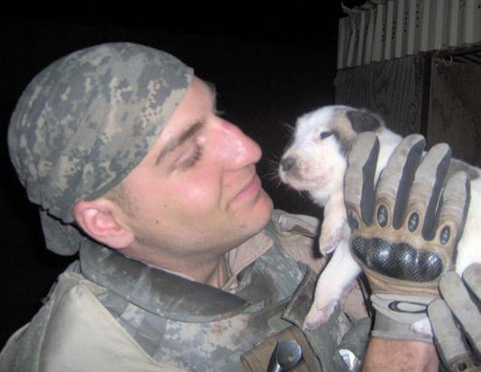 Cãozinho se tornou um símbolo de esperança para família de soldado morto 06