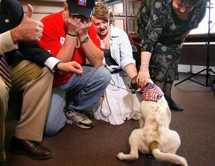 Cãozinho se tornou um símbolo de esperança para família de soldado morto 09