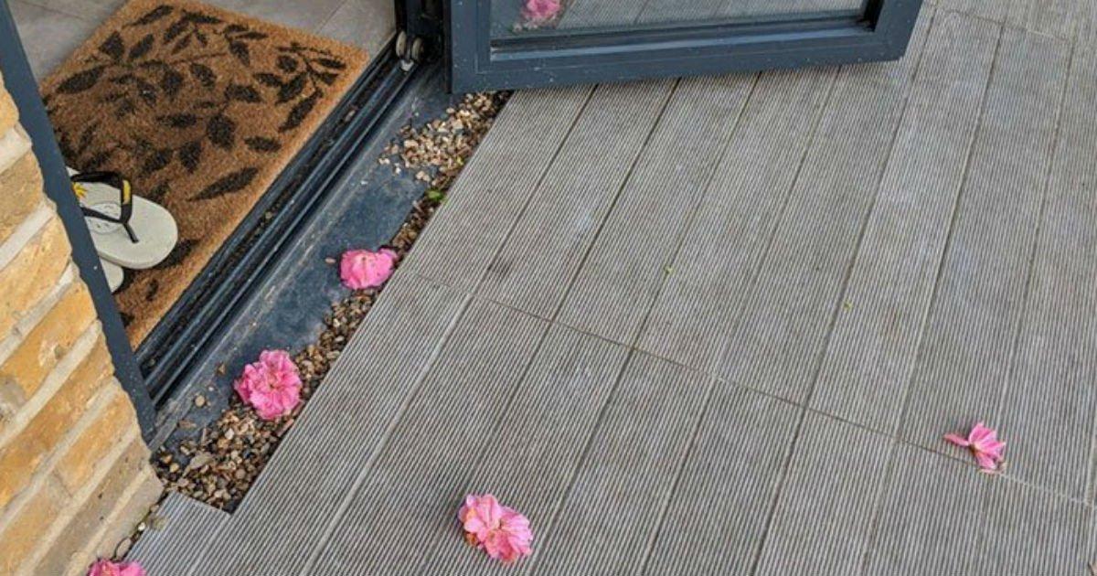 Mulher filma misterioso «admirador secreto» que leva flores para ela todos os dias 01