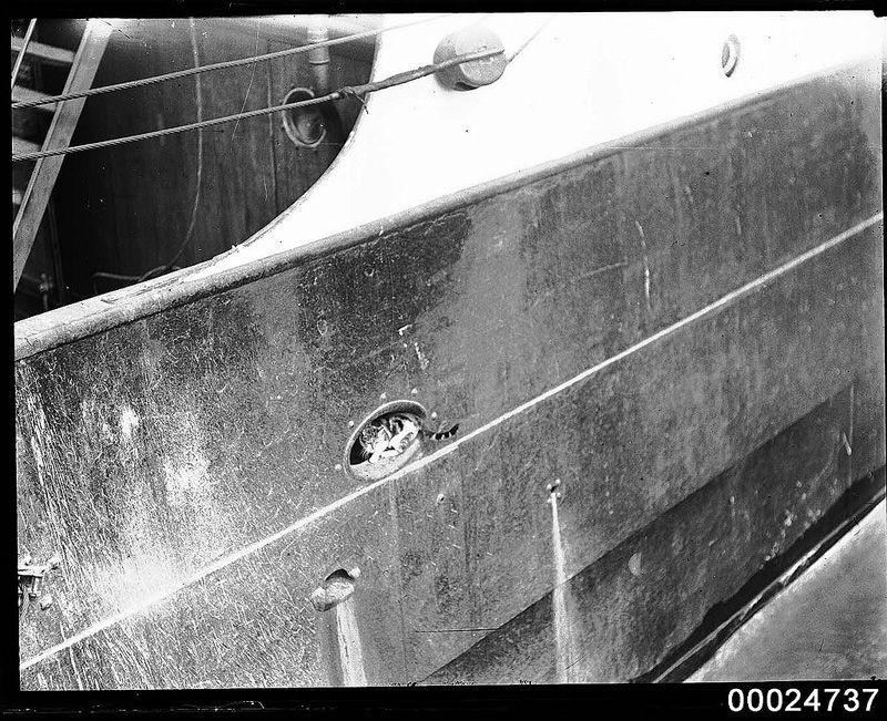 Gatos marinheiros 05