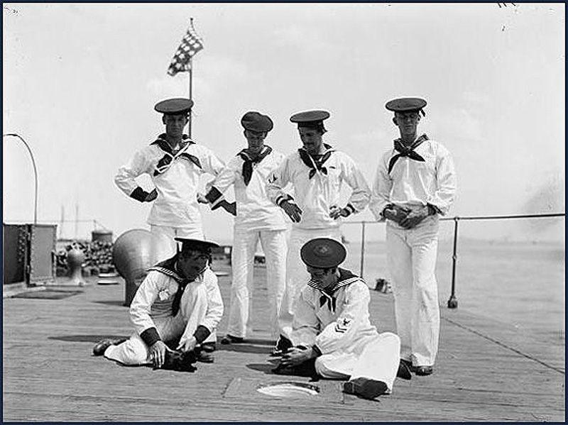 Gatos marinheiros 28