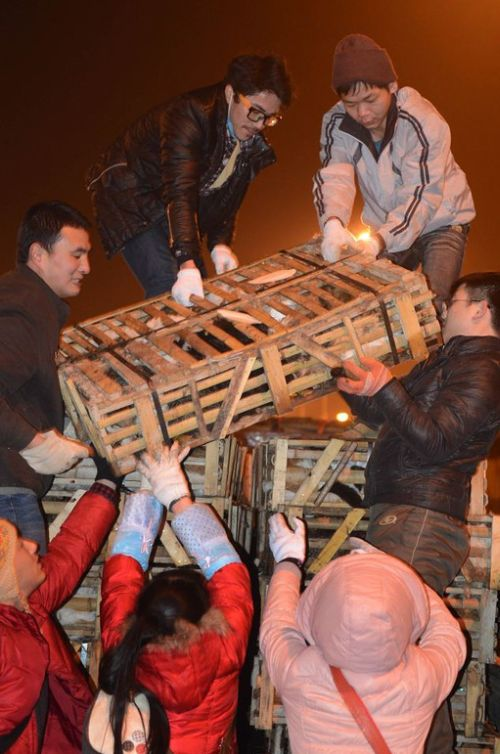 Volunt�rios resgatam 1000 Gatos do abate na China depois de acidente de caminh�o 06
