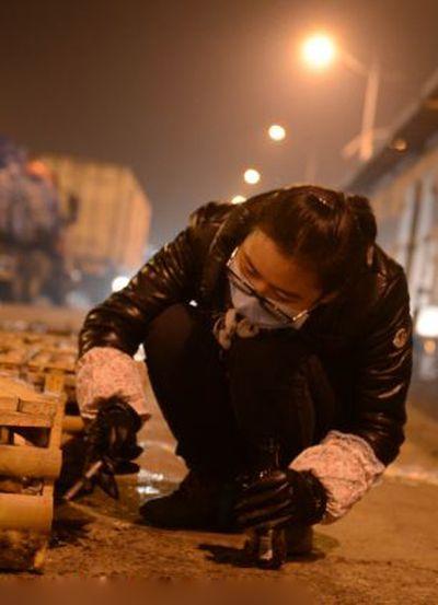 Volunt�rios resgatam 1000 Gatos do abate na China depois de acidente de caminh�o 10