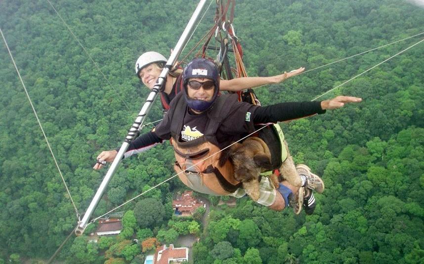 As belas aventuras de Oscar, o cão viajante 10