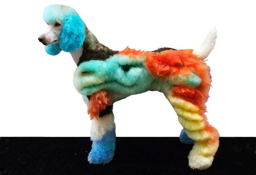 Penteados caninos bizarros 29