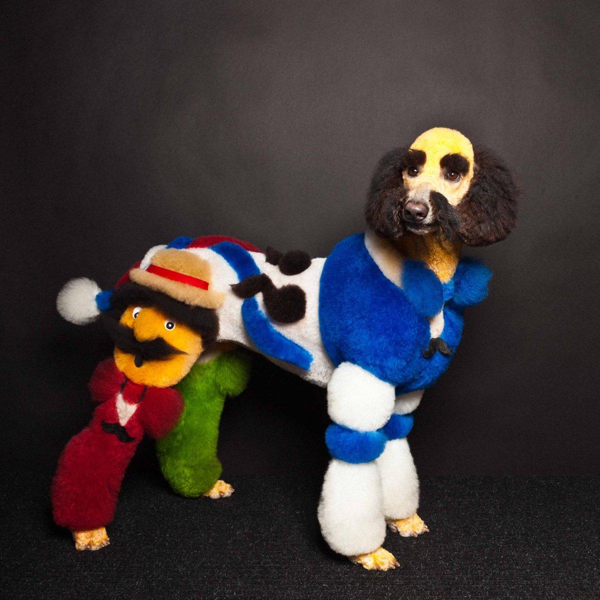 Concurso de moda canina mostra porque os cães mordem gente 14