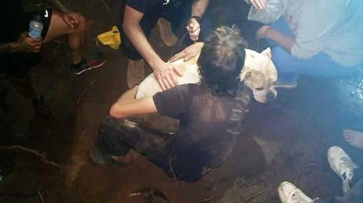 Assim foi o intenso resgate de um cão que esteve 3 dias preso debaixo da terra