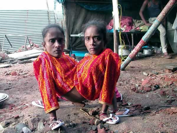 As irmãs-aranha indianas