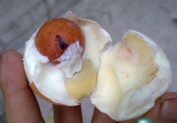Um ovo dentro de outro 04