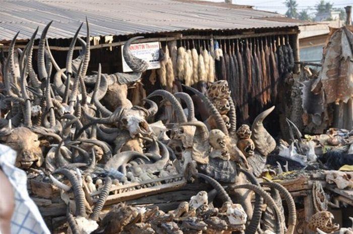 Supermercado de feitiçaria de Akodessewa