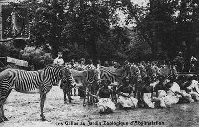 Os Zoológicos humanos do início do século XIX 02