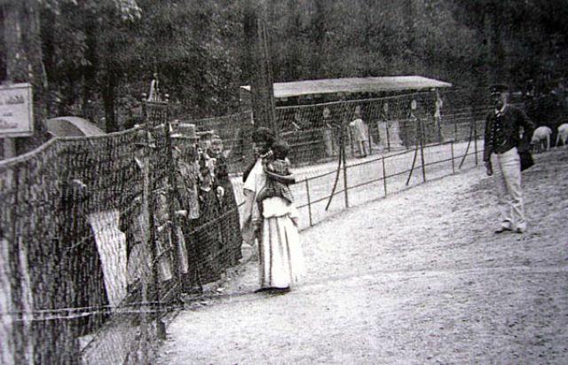 Os Zoológicos humanos do início do século XIX 04