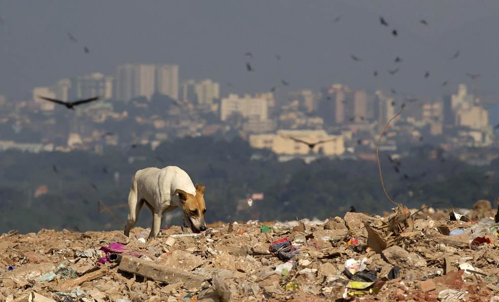 Fechamento do aterro sanitário gigante no Rio de Janeiro 13