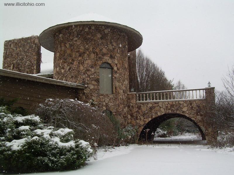 Dê uma olhada na espetacular casa abandonada de Mike Tyson em Ohio 22