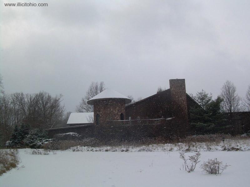 Dê uma olhada na espetacular casa abandonada de Mike Tyson em Ohio 25