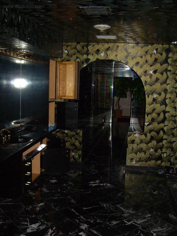 Dê uma olhada na espetacular casa abandonada de Mike Tyson em Ohio 29