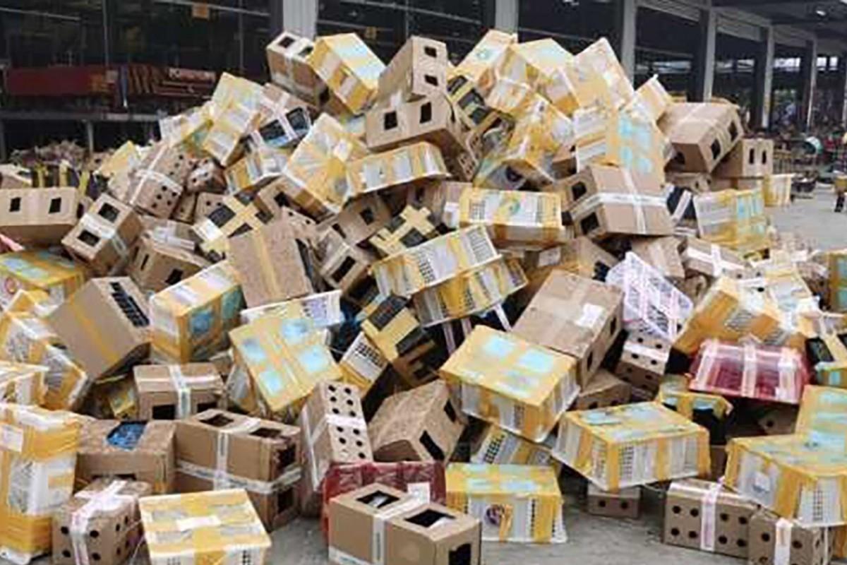 Grupo de resgate encontra mais de 5.000 cães, gatos e outros animais mortos em caixas de um depósito de logística na China