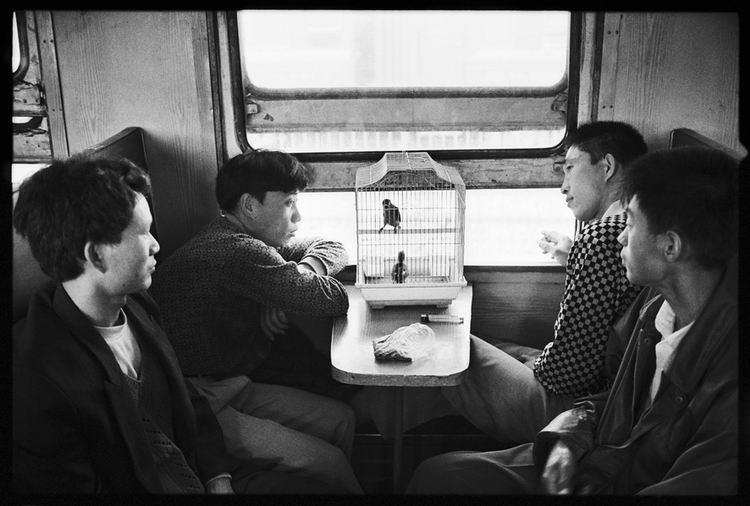 Os chineses no trem  04