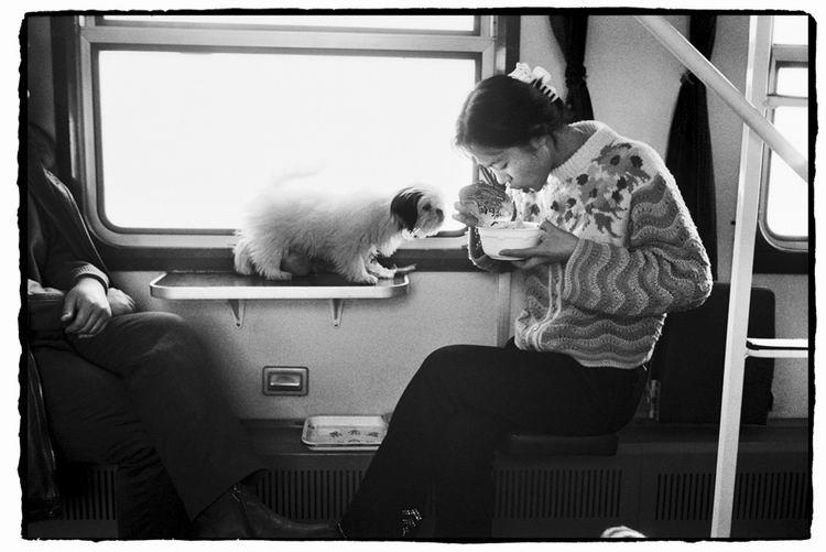 Os chineses no trem  09