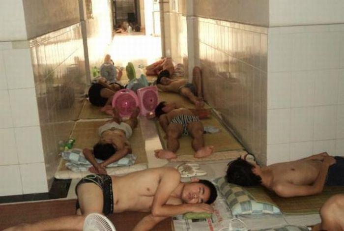 Como os estudantes chineses enfrentam a onda de calor 09