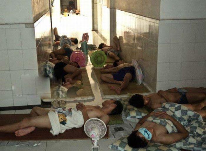 Como os estudantes chineses enfrentam a onda de calor 10