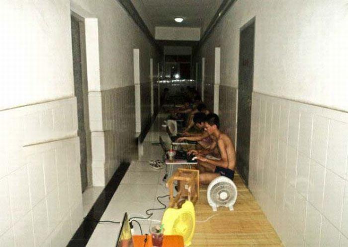 Como os estudantes chineses enfrentam a onda de calor 11