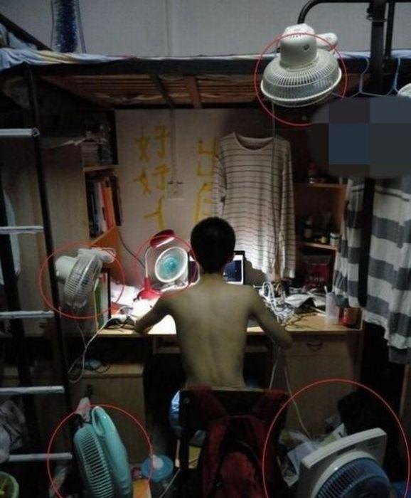 Como os estudantes chineses enfrentam a onda de calor 14