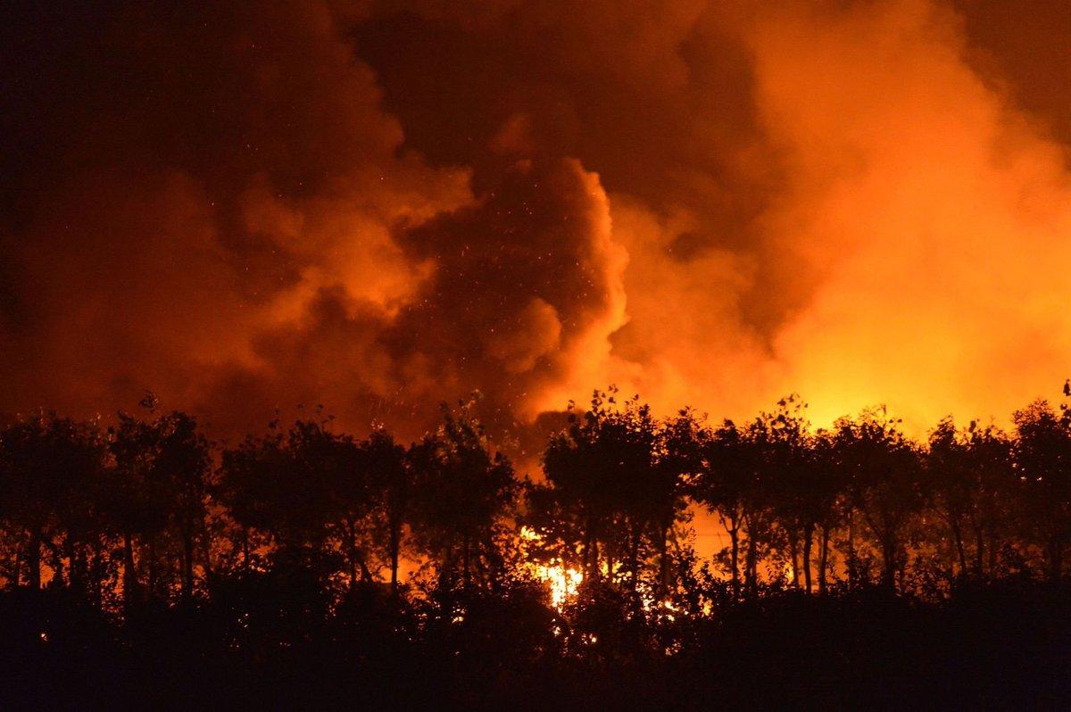 Explosões de Tianjin: a devastação do décimo maior porto do mundo 04