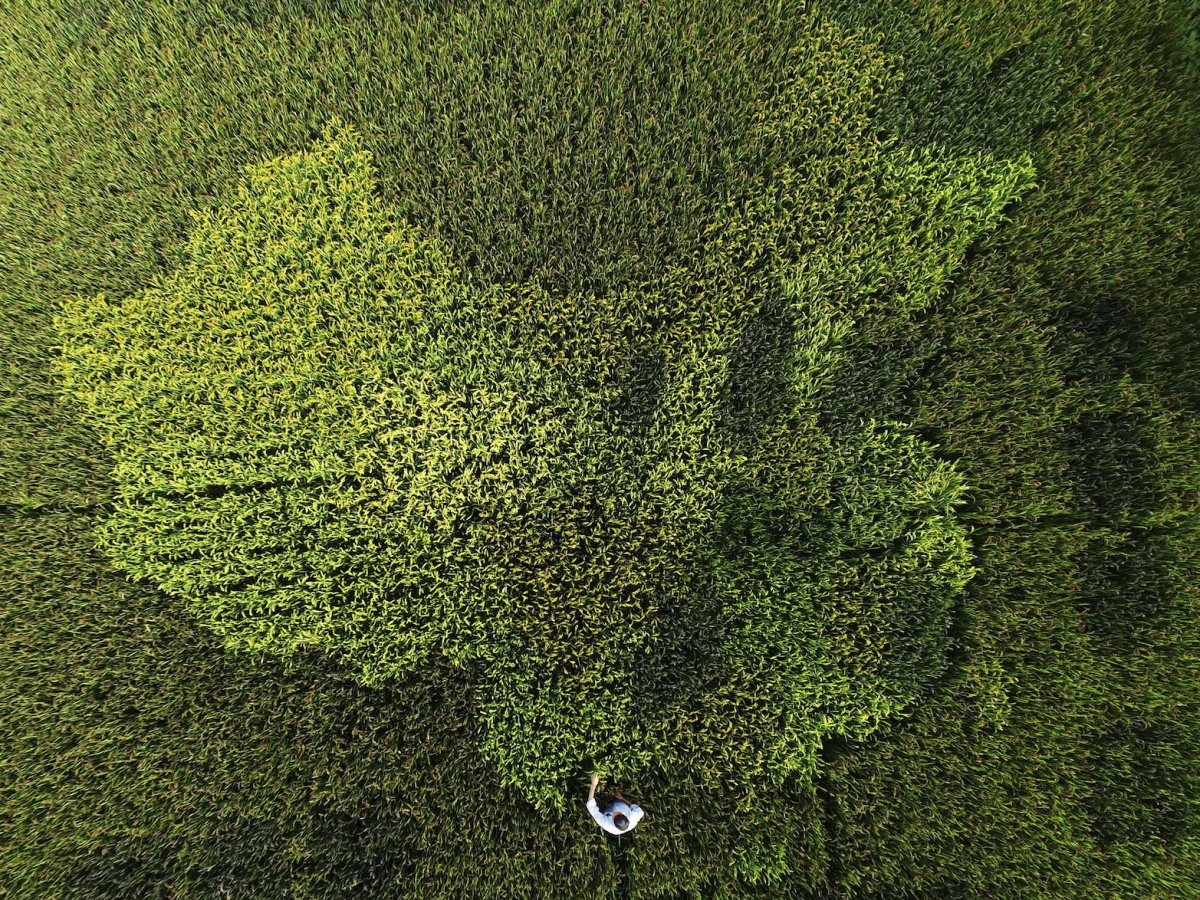 Fotografias aéreas deslumbrantes mostram o quão enorme é a China 01