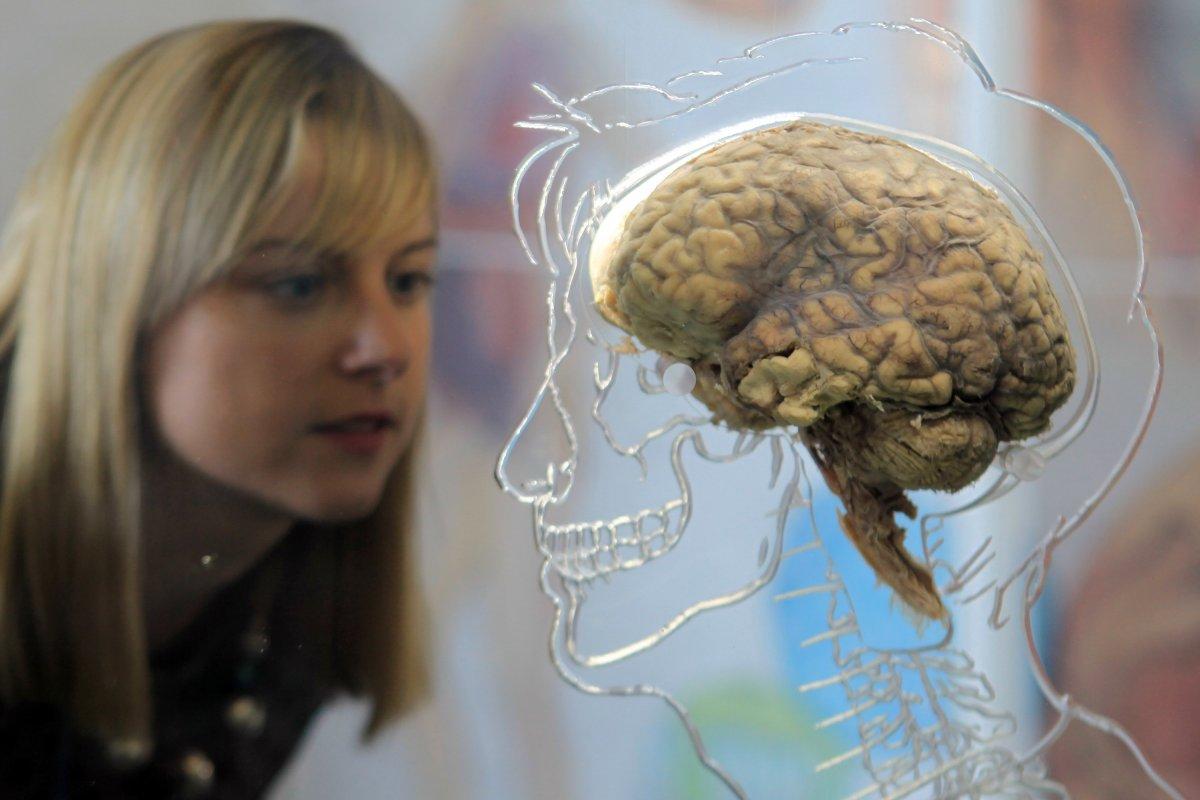 35 fatos científicos que são totalmente errados 25