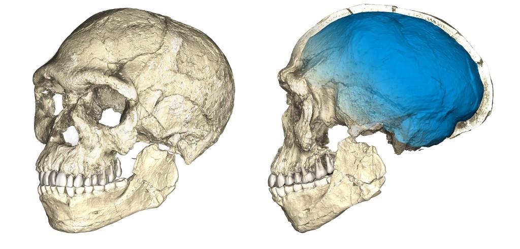 Nossa história foi reescrita: encontram fósseis de Homo sapiens 100 mil anos mais antigos