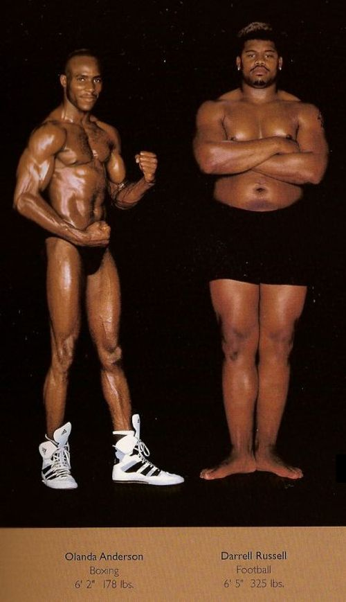 Diferentes esportes supõem diferentes tipos de corpos 18