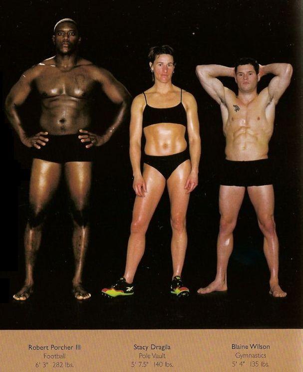 Diferentes esportes supõem diferentes tipos de corpos 33