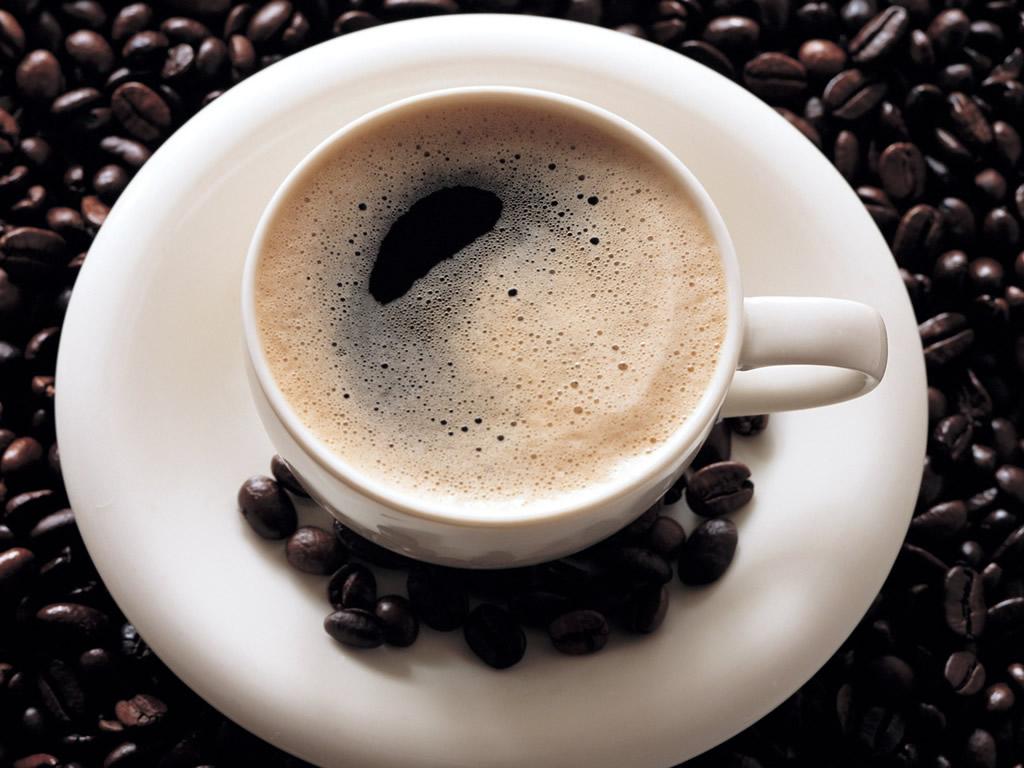 O café mais caro do mundo 08