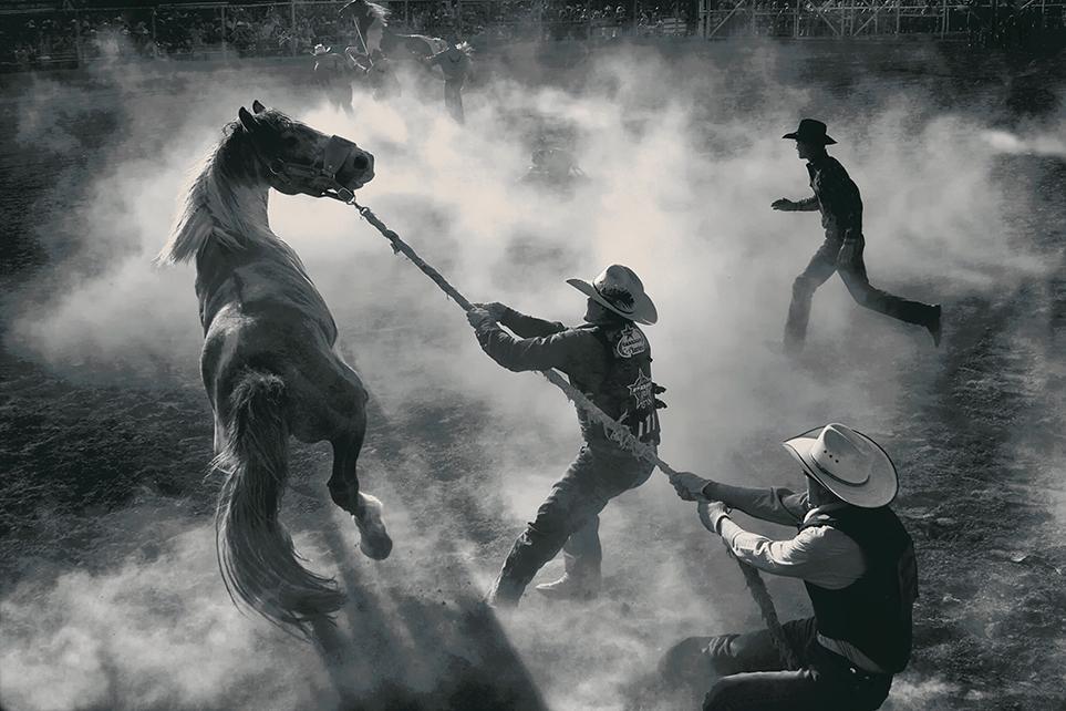 10º Concurso de Fotografias da Revista Smithsonian 31