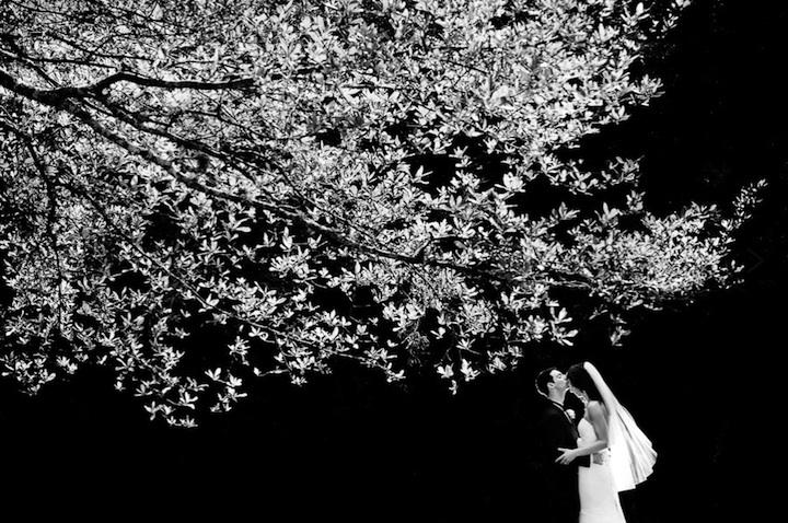 Fotografias de casamento fora do comum 03