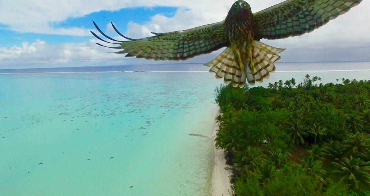 Estas são as fotos de drone mais alucinantes de 2016 08
