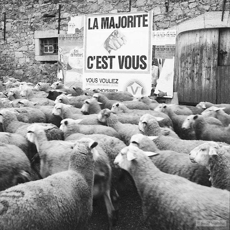 O humor e a elegância de René Maltête 22