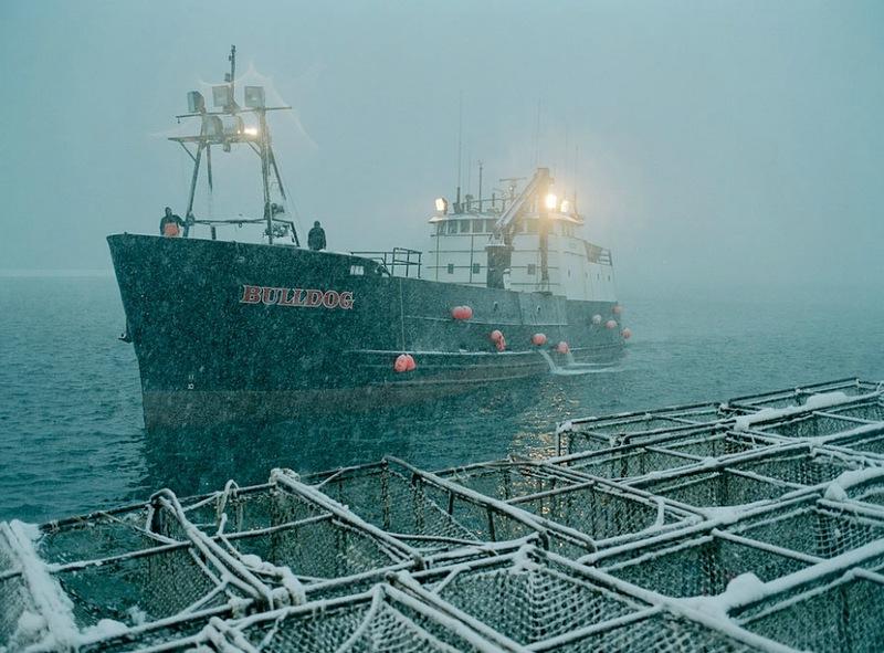 A perigosa aventura da pesca em alto-mar 01