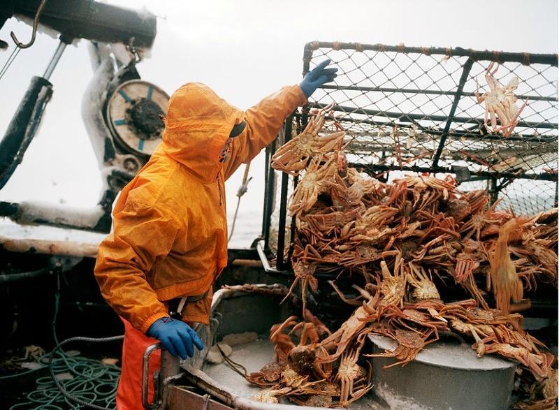 A perigosa aventura da pesca em alto-mar 12