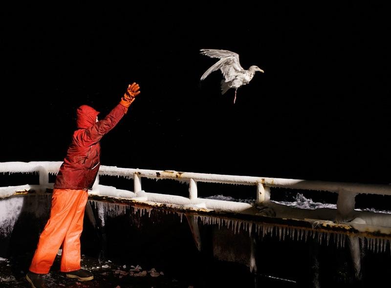 A perigosa aventura da pesca em alto-mar 17