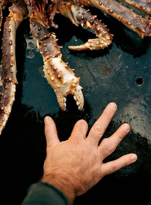 A perigosa aventura da pesca em alto-mar 19