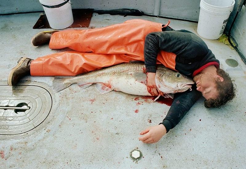 A perigosa aventura da pesca em alto-mar 20