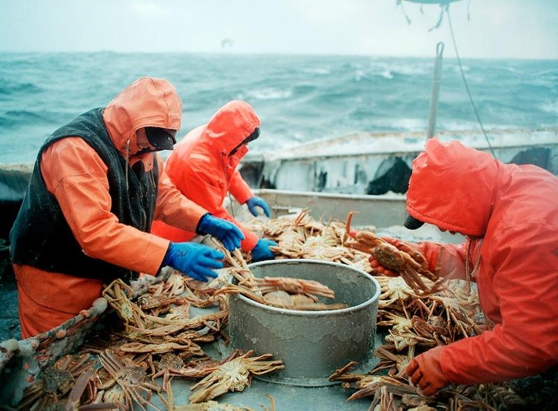 A perigosa aventura da pesca em alto-mar 24