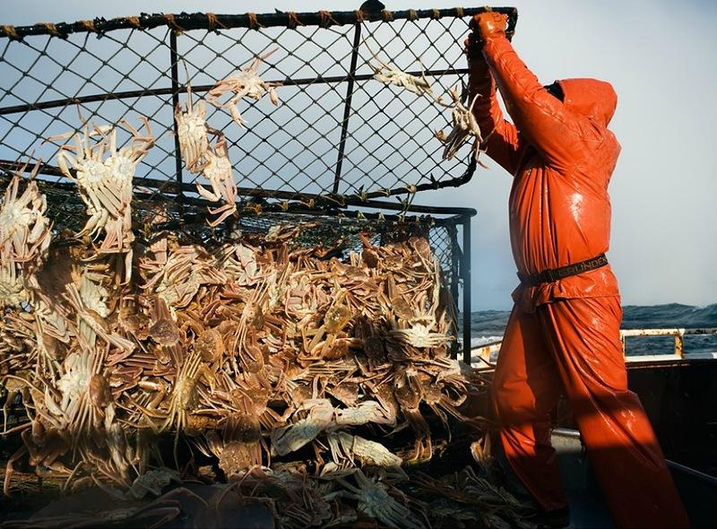 A perigosa aventura da pesca em alto-mar 30